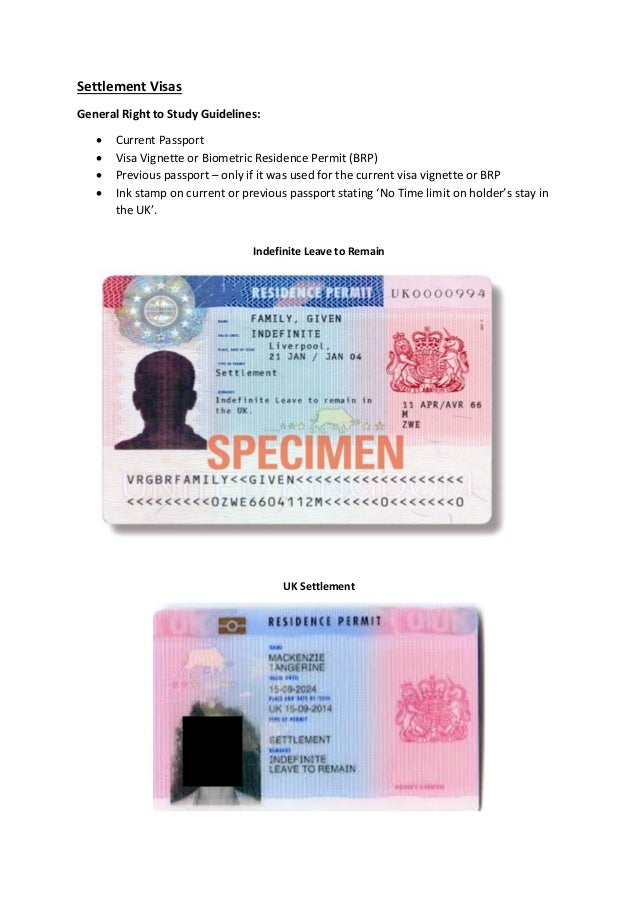 where is study permit number on the document