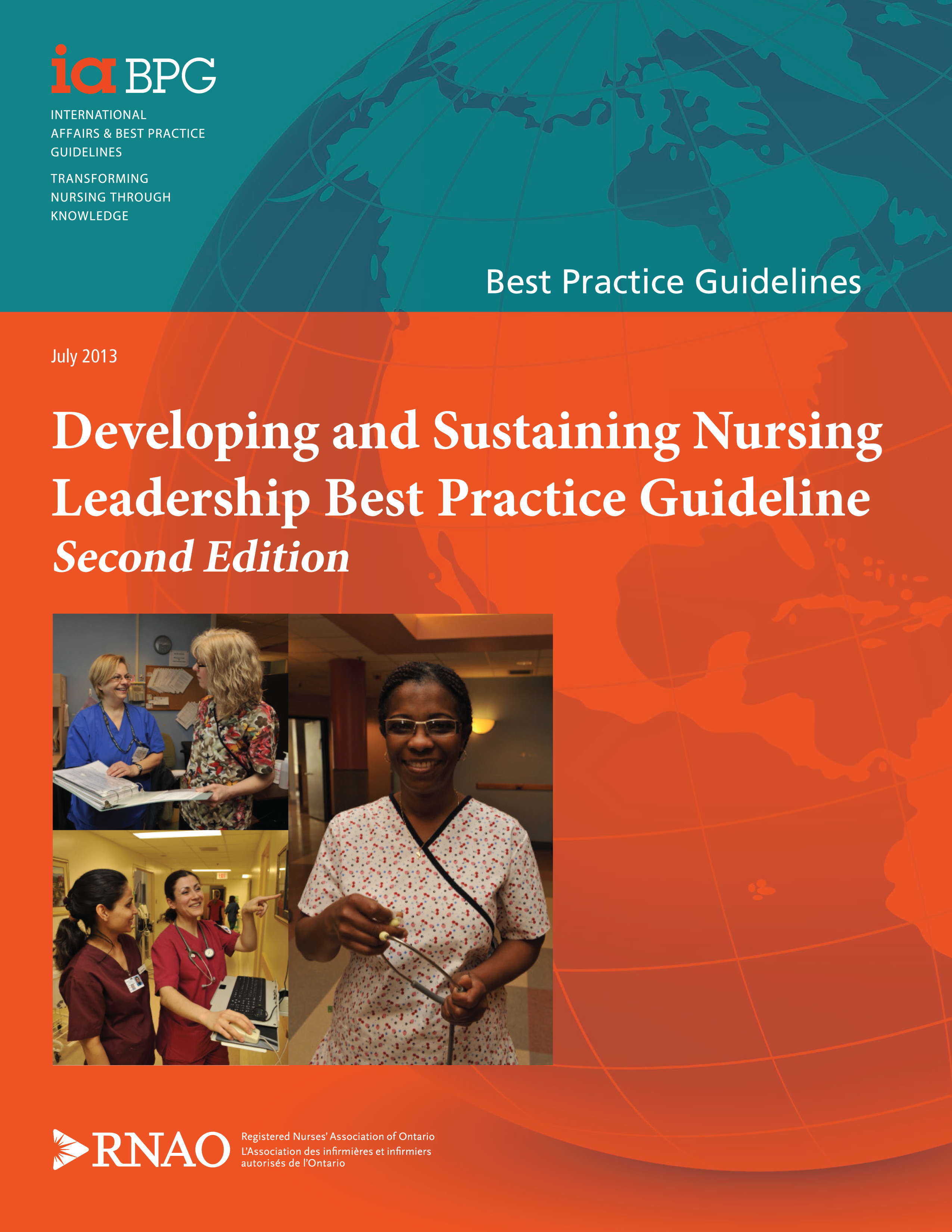 rnao best practice guidelines documentation