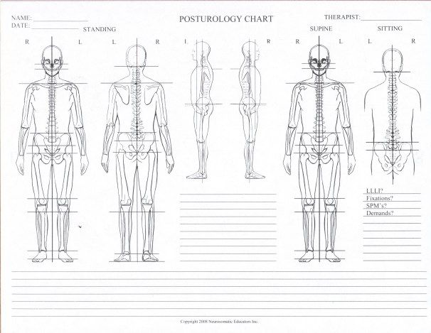 chiropractic spinal palpation documentation chart