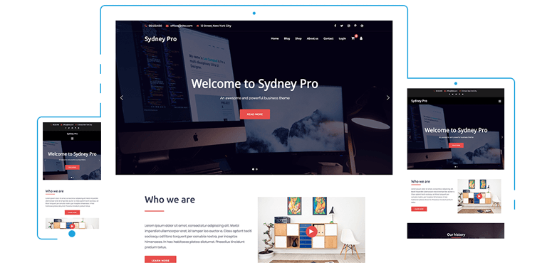 sydney theme wordpress documentation